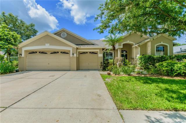 12312 Ashville Drive, Tampa, FL 33626 (MLS #T3109491) :: The Duncan Duo Team