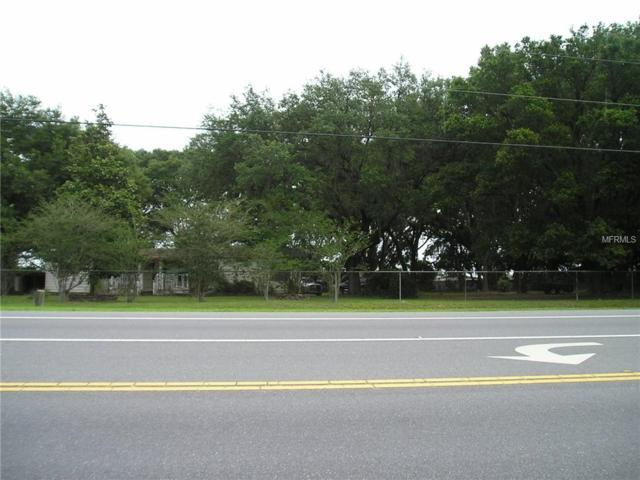 Wesley Chapel, FL 33545 :: Young Real Estate