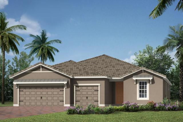 5617 Morning Sun Drive #129, Sarasota, FL 34238 (MLS #T3109538) :: The Duncan Duo Team