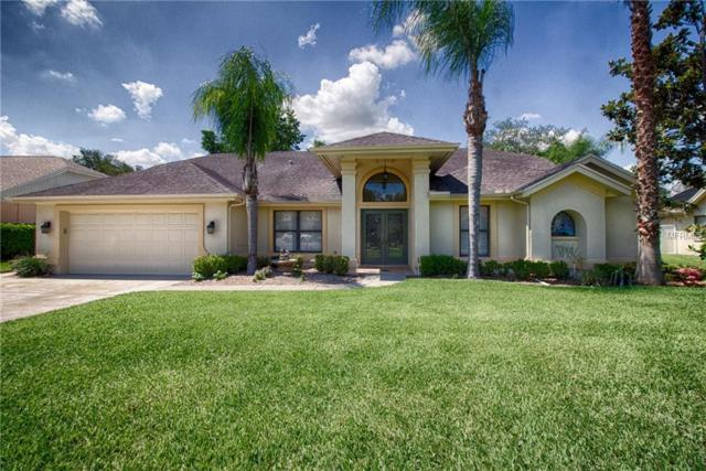 2304 Marseille Court, Valrico, FL 33596 (MLS #T3109556) :: White Sands Realty Group