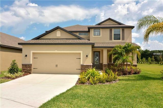 11853 Valhalla Woods Drive, Riverview, FL 33579 (MLS #T3109580) :: White Sands Realty Group