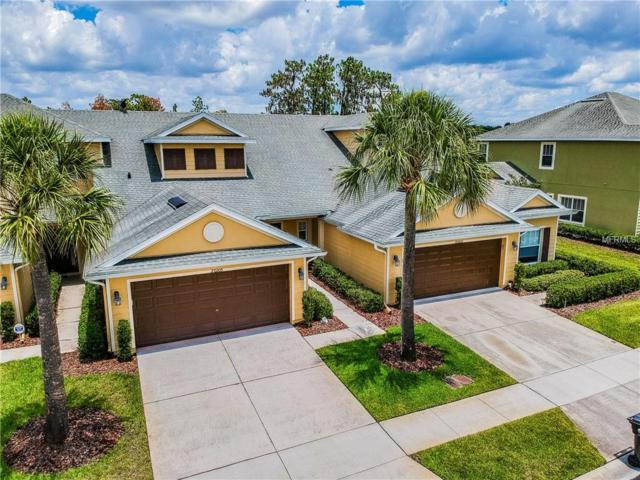 20205 Indian Rosewood Drive, Tampa, FL 33647 (MLS #T3109589) :: The Duncan Duo Team