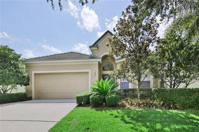 13225 Tradition Drive, Dade City, FL 33525 (MLS #T3109592) :: Team Bohannon Keller Williams, Tampa Properties