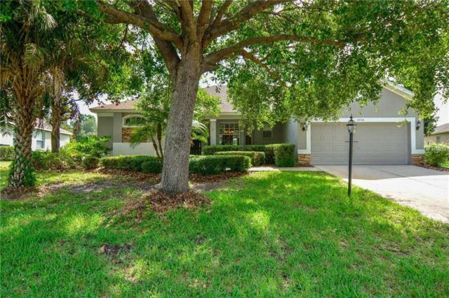 2934 Spring Hammock Drive, Plant City, FL 33566 (MLS #T3109631) :: Lovitch Realty Group, LLC
