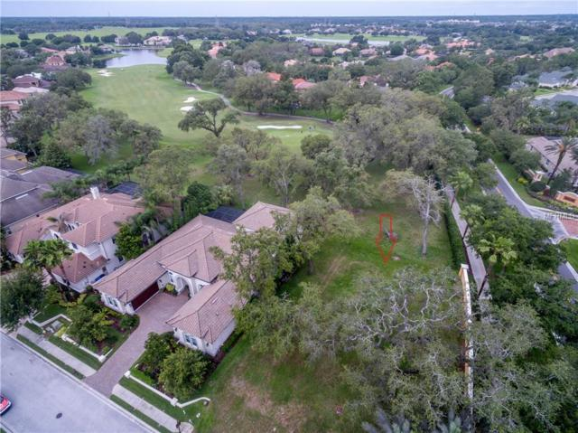 1323 Toscano Drive, Trinity, FL 34655 (MLS #T3109749) :: The Duncan Duo Team
