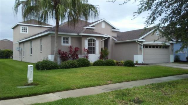 16318 Bridgewalk Drive, Lithia, FL 33547 (MLS #T3109867) :: The Duncan Duo Team