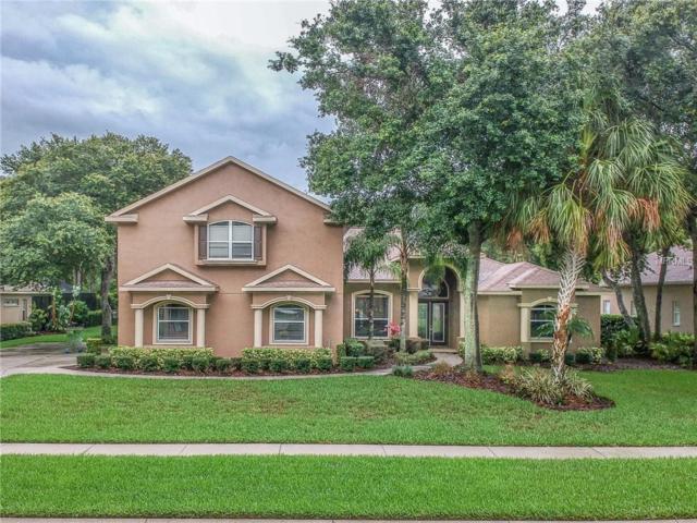 6232 Kingbird Manor Drive, Lithia, FL 33547 (MLS #T3110005) :: The Brenda Wade Team