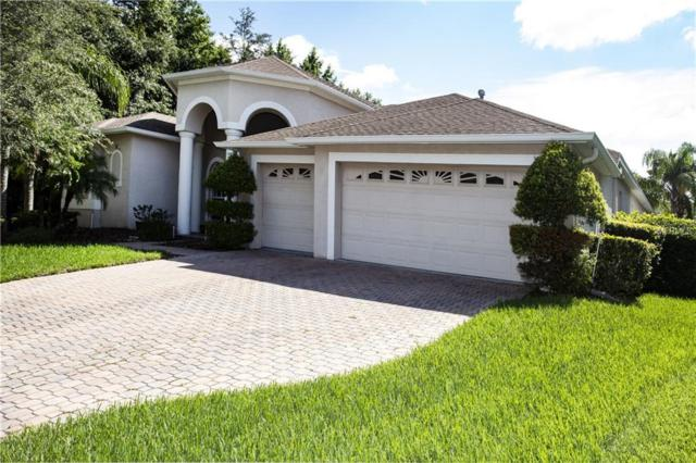 16305 Dobson Court, Tampa, FL 33647 (MLS #T3110112) :: Medway Realty