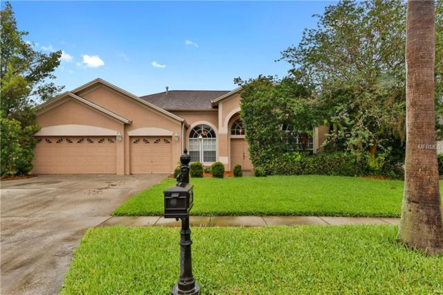11929 Middlebury Drive, Tampa, FL 33626 (MLS #T3110323) :: The Duncan Duo Team