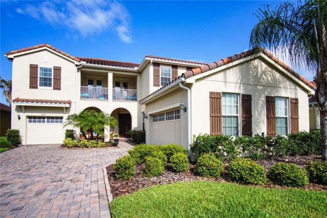 6918 Silver Sage Circle, Tampa, FL 33634 (MLS #T3110332) :: The Lockhart Team