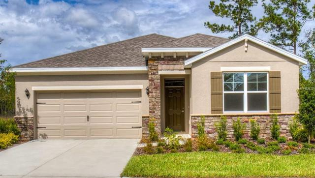 31465 Tansy Bend, Wesley Chapel, FL 33545 (MLS #T3110414) :: The Duncan Duo Team