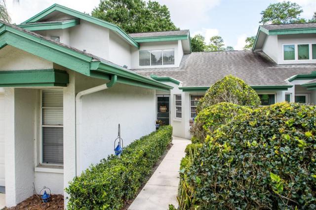200 Woodridge Circle, Oldsmar, FL 34677 (MLS #T3110812) :: O'Connor Homes