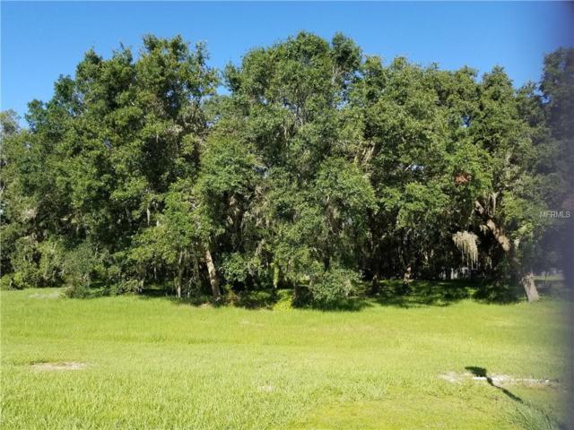 Lot 1a Chapel Park, Wesley Chapel, FL 33543 (MLS #T3110817) :: Team Pepka