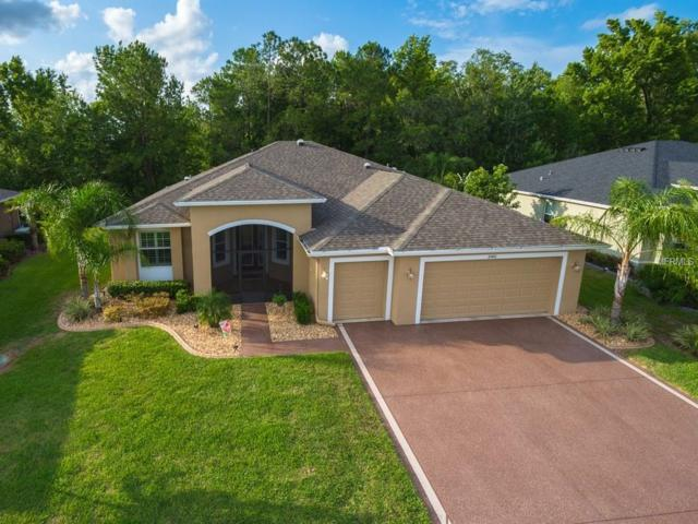 10401 Belmullet Drive, San Antonio, FL 33576 (MLS #T3110875) :: Delgado Home Team at Keller Williams