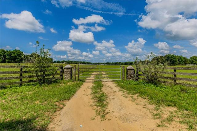 20151 Powerline Road, Dade City, FL 33523 (MLS #T3110941) :: The Duncan Duo Team