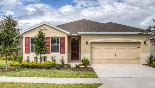 31446 Tansy Bend, Wesley Chapel, FL 33545 (MLS #T3110950) :: The Duncan Duo Team