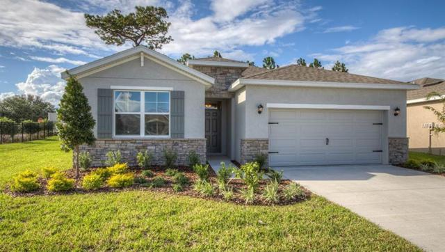 31462 Tansy Bend, Wesley Chapel, FL 33545 (MLS #T3110952) :: The Duncan Duo Team