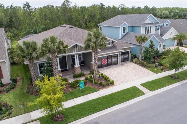 16766 Courtyard Loop, Land O Lakes, FL 34638 (MLS #T3110995) :: The Duncan Duo Team