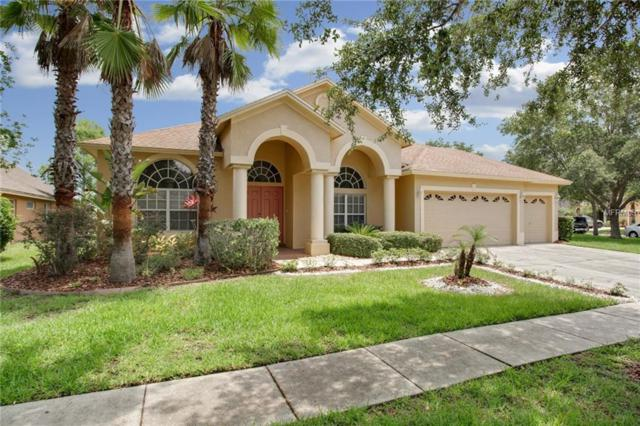 19101 Native Fern Way, Tampa, FL 33647 (MLS #T3111103) :: Team Bohannon Keller Williams, Tampa Properties
