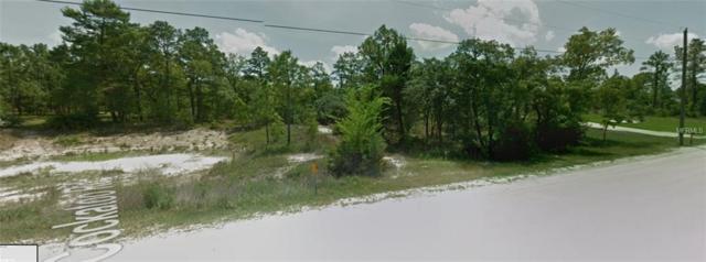 8486 Cockatoo Road, Weeki Wachee, FL 34613 (MLS #T3111339) :: FL 360 Realty