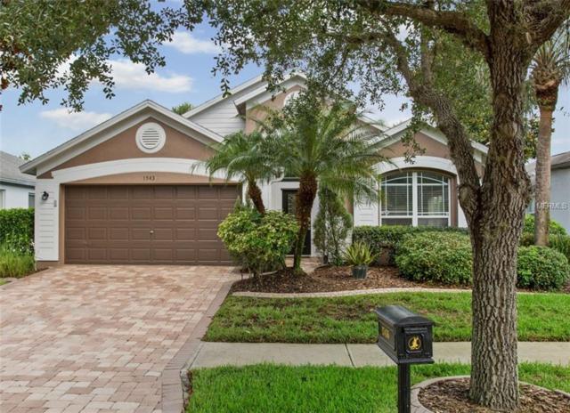 15436 Martinmeadow Drive, Lithia, FL 33547 (MLS #T3111402) :: The Duncan Duo Team