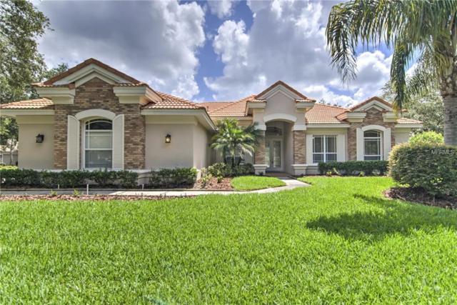 17811 Arbor Haven Drive, Tampa, FL 33647 (MLS #T3111445) :: Team Bohannon Keller Williams, Tampa Properties