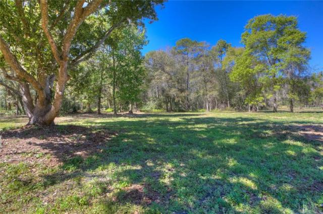 TBD Arbor Drive, Lutz, FL 33548 (MLS #T3111527) :: Mark and Joni Coulter | Better Homes and Gardens