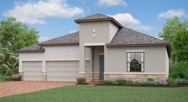 13313 Orca Sound Drive, Riverview, FL 33579 (MLS #T3111574) :: The Duncan Duo Team