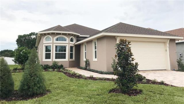 15502 Casey Road, Tampa, FL 33624 (MLS #T3111610) :: McConnell and Associates