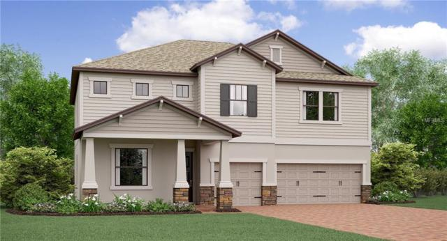 13202 Hopi Maize Loop, Riverview, FL 33579 (MLS #T3111683) :: The Duncan Duo Team