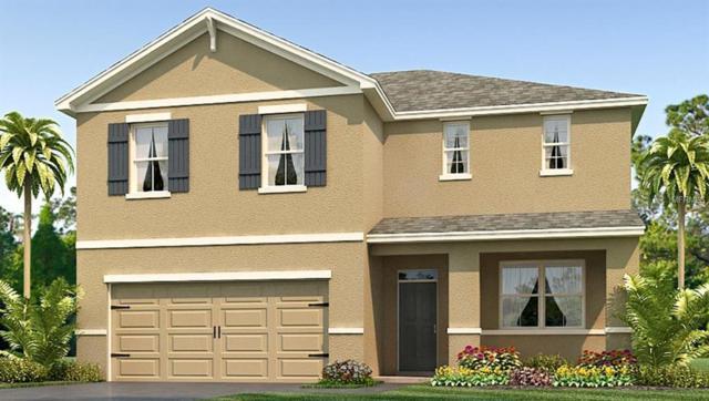 8203 Bilston Village Lane, Gibsonton, FL 33534 (MLS #T3111701) :: The Light Team