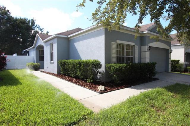 6104 Kiteridge Drive, Lithia, FL 33547 (MLS #T3111932) :: The Duncan Duo Team