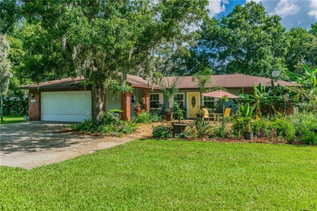 11266 Pine Forest Drive, New Port Richey, FL 34654 (MLS #T3111973) :: Team Pepka