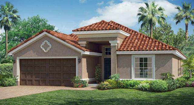 13195 Green Violet Drive, Riverview, FL 33579 (MLS #T3112010) :: The Duncan Duo Team