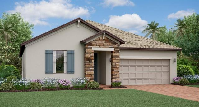 13213 Haystack Court, Riverview, FL 33579 (MLS #T3112062) :: The Duncan Duo Team