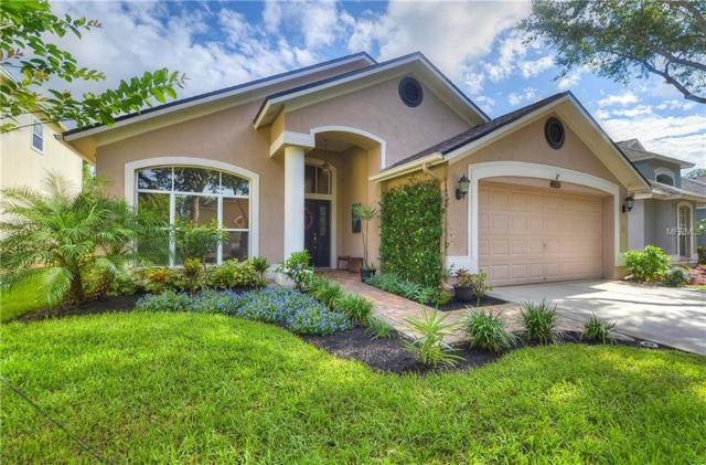 12329 Glenfield Avenue, Tampa, FL 33626 (MLS #T3112068) :: The Duncan Duo Team
