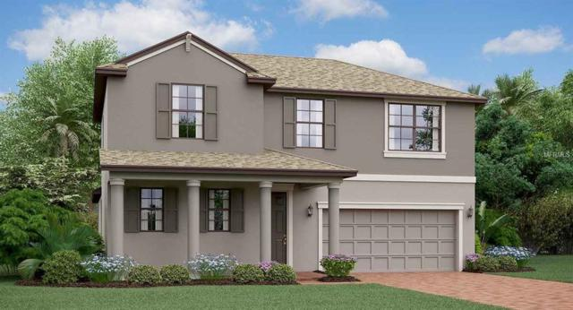 13217 Haystack Court, Riverview, FL 33579 (MLS #T3112078) :: The Duncan Duo Team