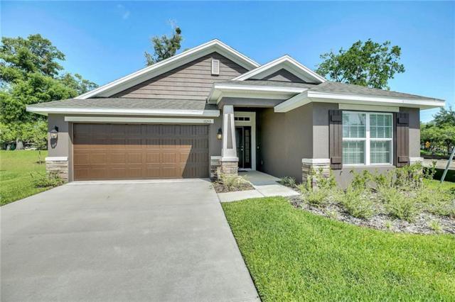 14510 Potterton Circle, Hudson, FL 34667 (MLS #T3112269) :: Premium Properties Real Estate Services