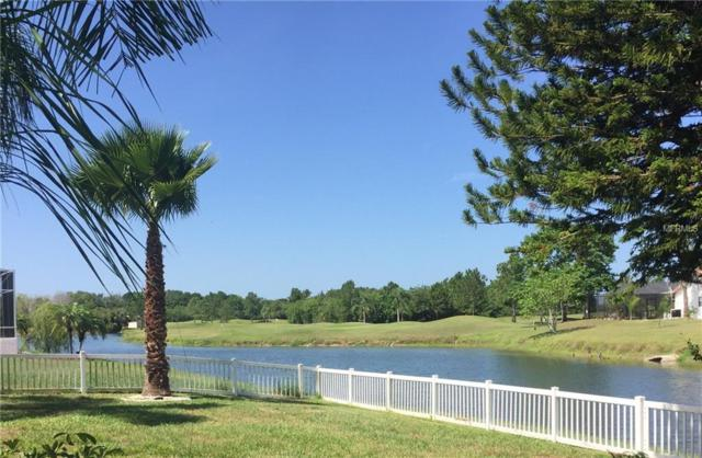 Address Not Published, Riverview, FL 33579 (MLS #T3112301) :: The Duncan Duo Team