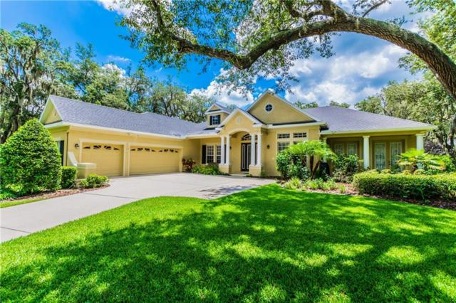 5802 Terncrest Drive, Lithia, FL 33547 (MLS #T3112332) :: The Duncan Duo Team