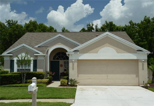29547 Morningmist Drive, Wesley Chapel, FL 33543 (MLS #T3112354) :: The Duncan Duo Team