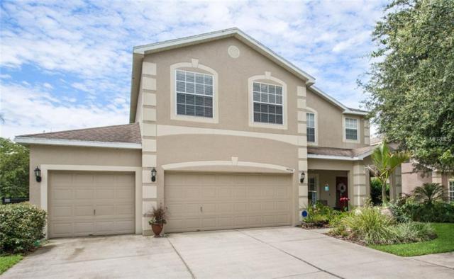 14720 Heronglen Drive, Lithia, FL 33547 (MLS #T3112362) :: The Duncan Duo Team