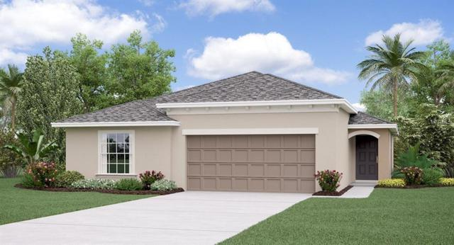 10229 Strawberry Tetra Drive, Riverview, FL 33578 (MLS #T3112383) :: The Duncan Duo Team