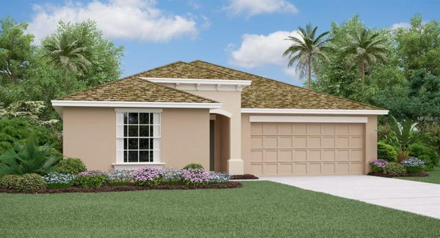 10215 Shimmering Koi Way, Riverview, FL 33578 (MLS #T3112400) :: The Duncan Duo Team