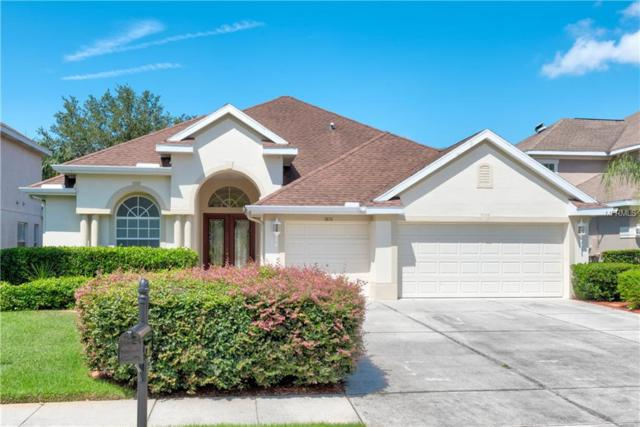 3651 Valencia Cove Court, Land O Lakes, FL 34639 (MLS #T3112436) :: Team Bohannon Keller Williams, Tampa Properties