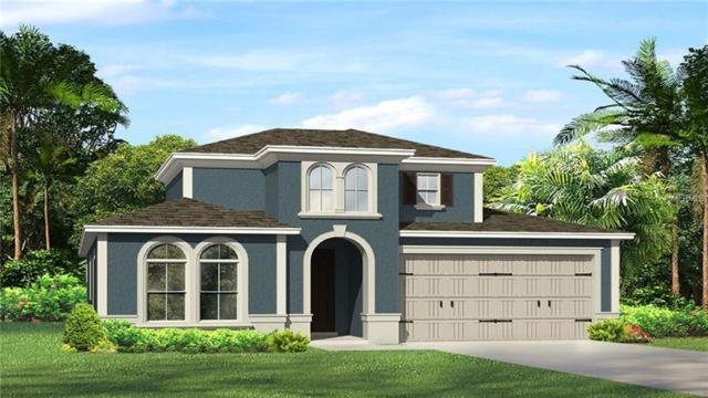 4622 Tivoli Drive, Wesley Chapel, FL 33543 (MLS #T3112439) :: The Duncan Duo Team