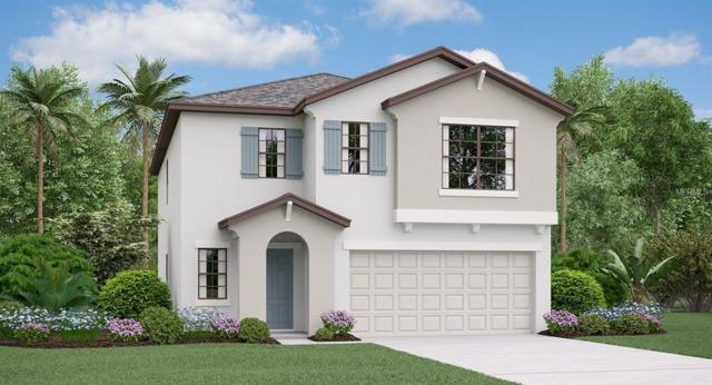 12714 Hampton Hill Drive, Riverview, FL 33578 (MLS #T3112477) :: The Duncan Duo Team