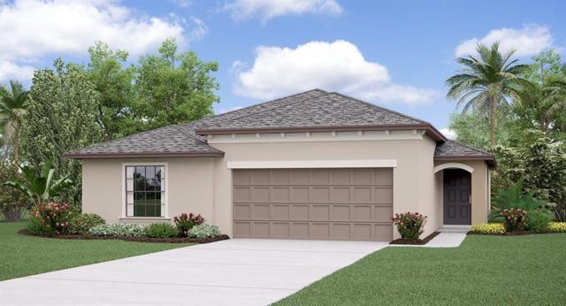 10113 Rose Petal Place, Riverview, FL 33578 (MLS #T3112602) :: The Duncan Duo Team