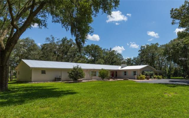19115 Livingston Avenue, Lutz, FL 33559 (MLS #T3112622) :: The Duncan Duo Team