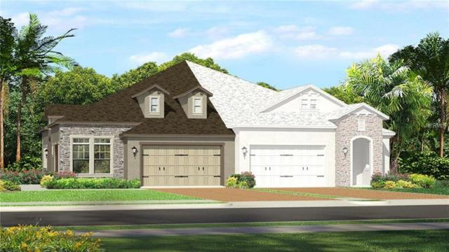 4265 Barletta Court, Wesley Chapel, FL 33543 (MLS #T3112645) :: The Duncan Duo Team